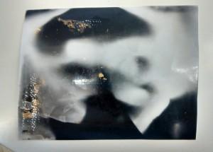PLTW pinhole camera image