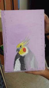 bird closet